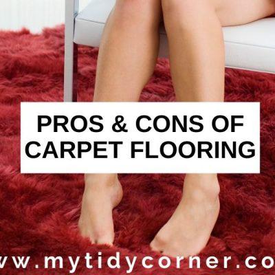 Advantages and Disadvantages of Carpet Flooring