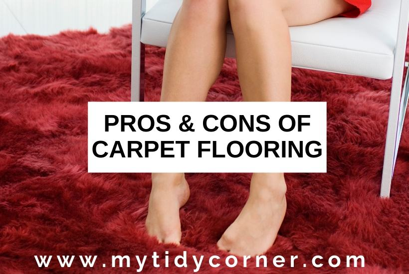 Advantages and disadvantages of carpet flooring