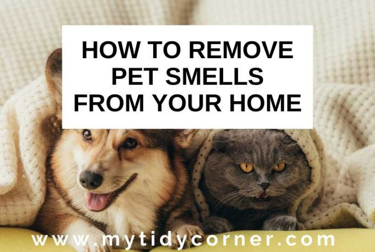 How to remove pet smells from your home