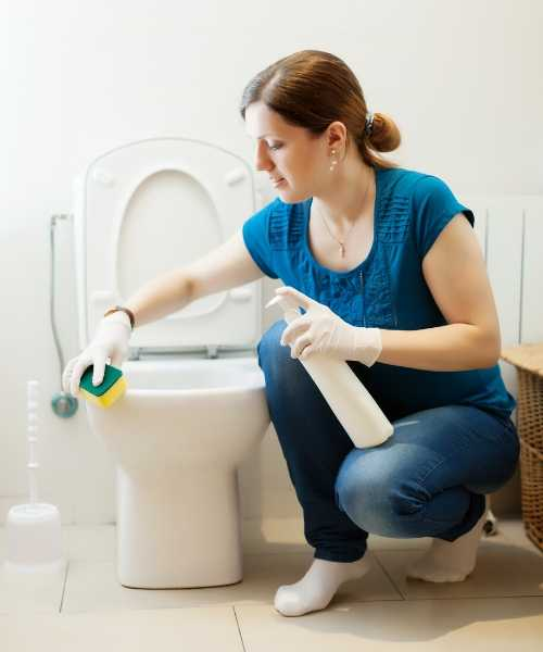 A woman cleaning toilet