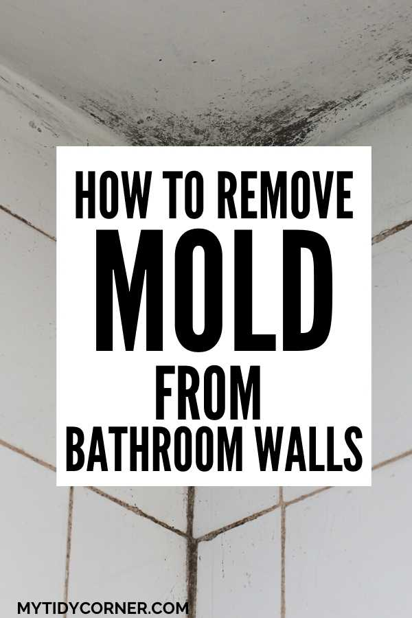 How to clean mold off bathroom walls