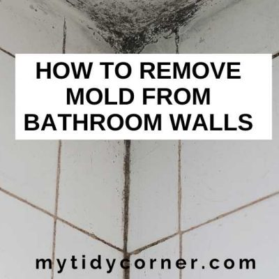 How to Remove Mold from Bathroom Walls