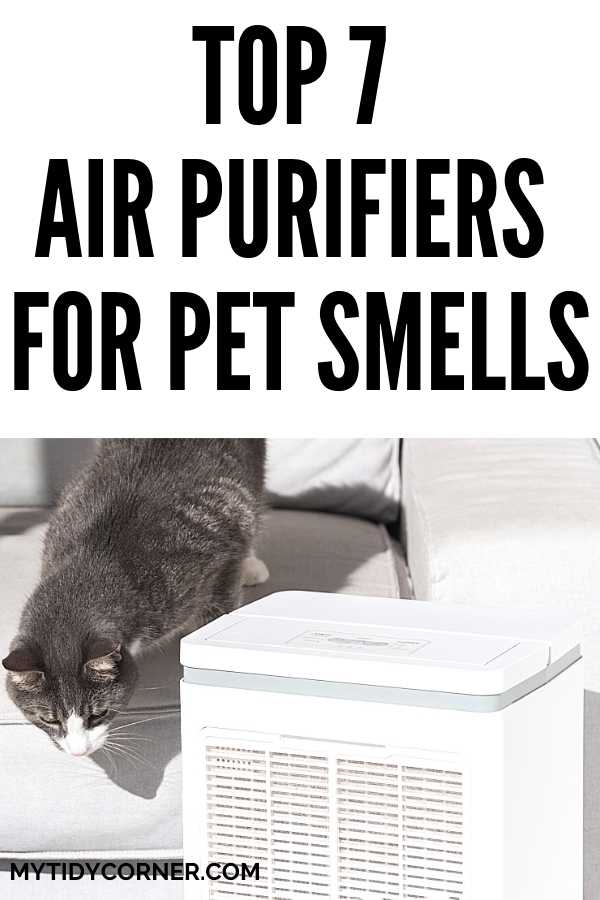 Best air purifiers for pet odors