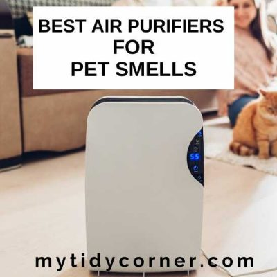 7 Best Air Purifiers for Pet Smell