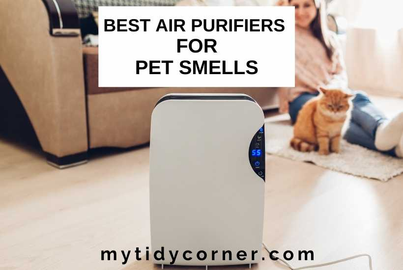 Best air purifiers for pet smell