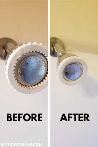Cleaning showerhead with vinegar - before and after photo