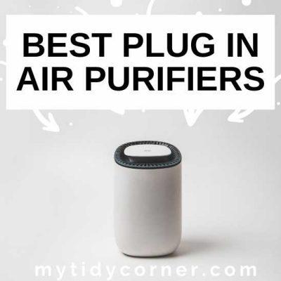 6 Best Plug In Air Purifiers