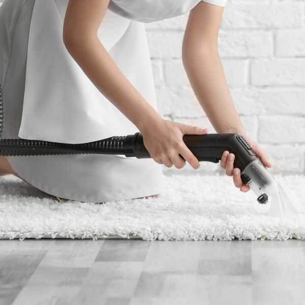 Carpet cleaning area rugs yourself
