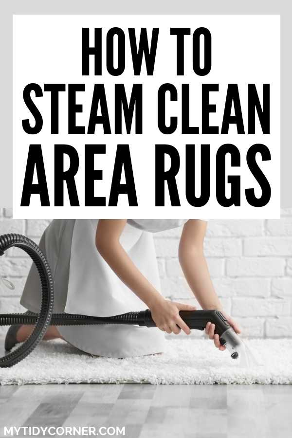 Steam cleaning area rugs
